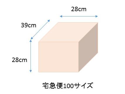 宅急便100サイズー一般的なみかん箱サイズ
