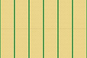 12畳の広さ/サイズ■6.0坪/19.87㎡